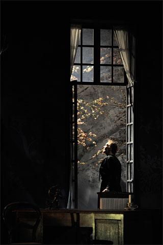 © Jef Rabillon